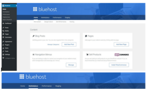 bluehost ins