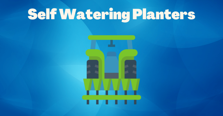 Read more about the article A Self Watering Planters gives everyone a thumbs up.