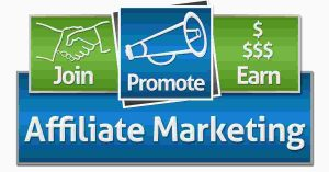 Read more about the article Affiliate Marketing Offers Home Based Business In A Box